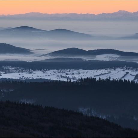 Bavarian Forest National Park