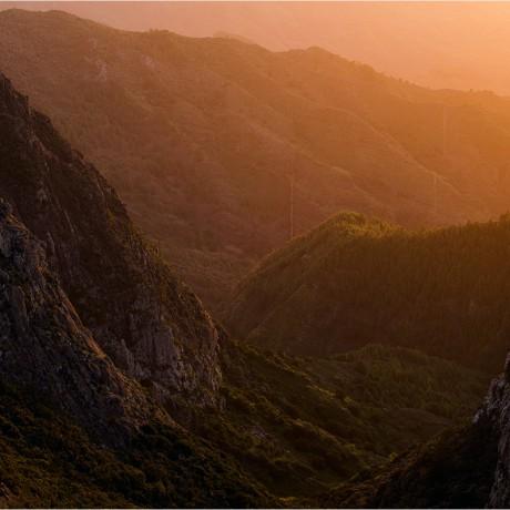 Garajonay National Park, La Gomera.