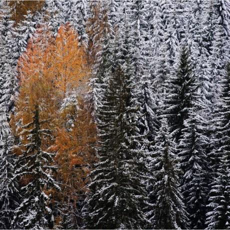 Franconian Forest, Upper Franconia