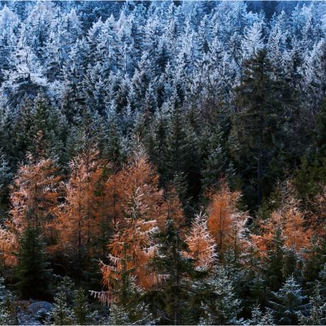 Fichtel Mountains, Upper Franconia