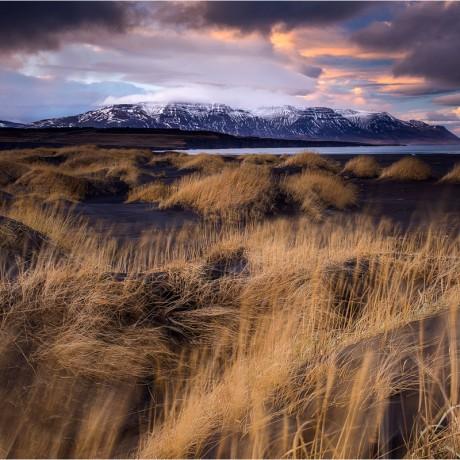 A hidden beach in north Iceland.