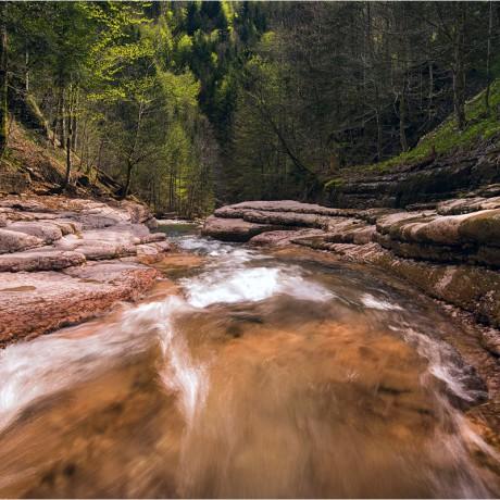 Taugl creek, Austria