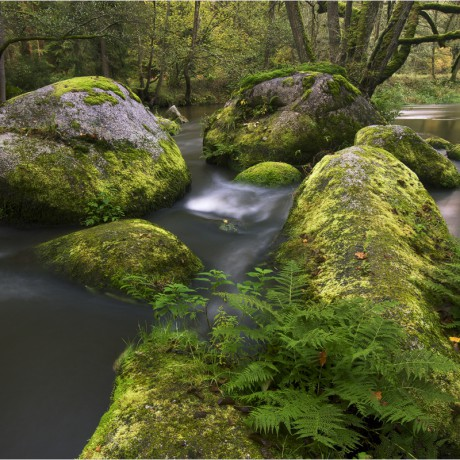 Waldnaab, Upper Palatinate